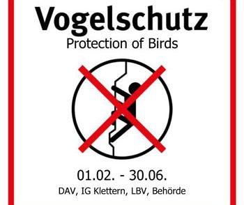Artikelbild zu Artikel 'Wilhelmsfels – Teilsperrung wegen Vogelbrut'